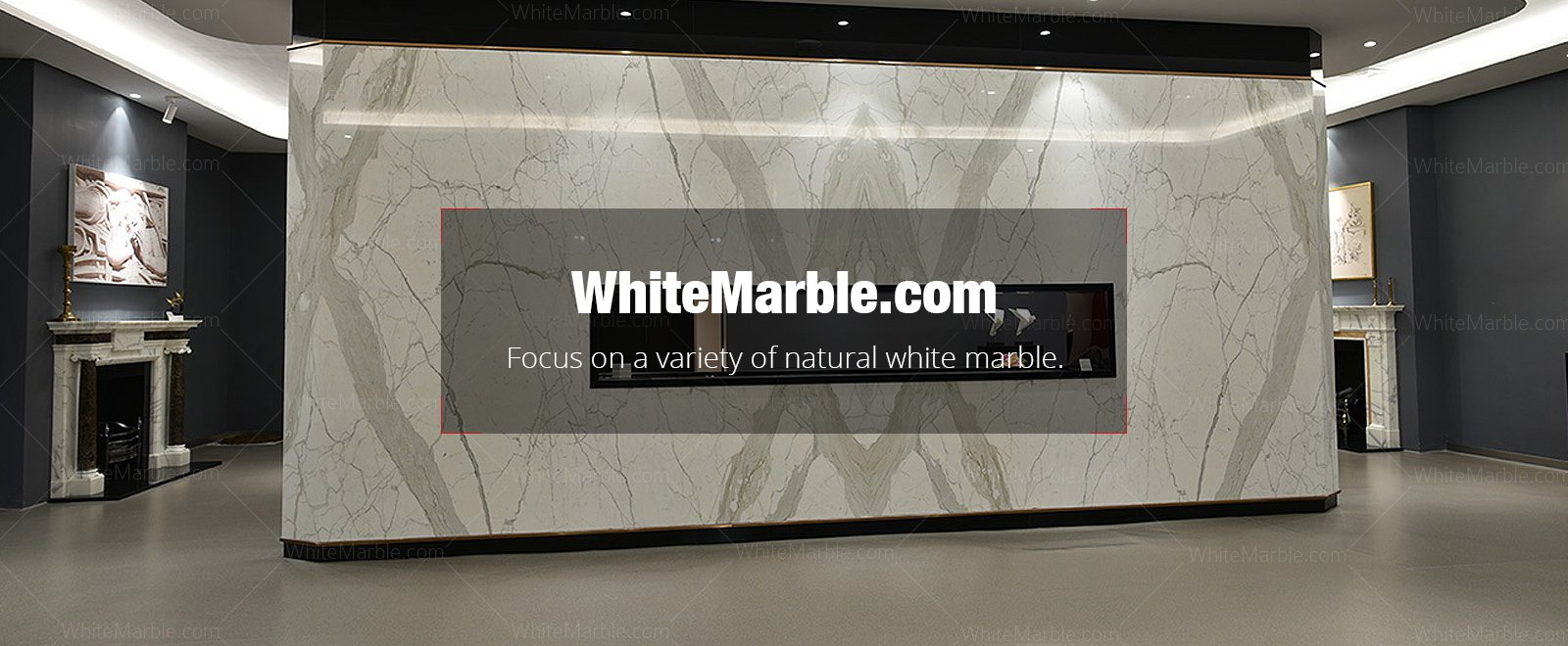 Focus on a variety of natural white marble